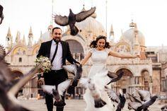Tím svadobných fotografov a kameramanov, ktorých vášňou a profesionálnou prácou je zaznamenať emócie <3  #svadba #svadobnyfotograf #nasasvadba #svadobnyvyhladavac #MEMO #MEMOPhotoAgency #svadobnykameraman #svadobnevideo Hľadáte svadobné oznámenia, obrúčky, svadobné šaty, miesto pre hostinu, fotografa, kvety či výzdobu? U nás nájdete všetko pre Váš dokonalý deň na 1 mieste! Nasa, Fair Grounds