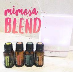 Mimosa Diffuser Blend 3 drops Wild Orange 3 drops Balance 2 drops Frankincense 2 drops Bergamot