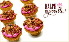 """Dog owners and pups will love deal: """"Six organic bacon cupcakes"""" as featured on doggyloot.com"""