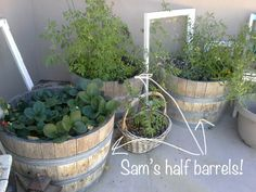 DIY Wine Barrel Fountain