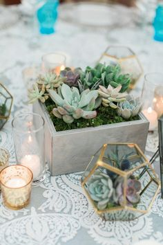Love these succulents in the metal terrarium and grey box on lace table runners