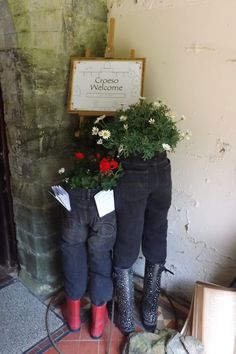 My 'jean planters' - St Colman Flower Festival May 2013 in celebration of the Urdd Eisteddfod.
