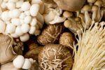 Μανιτάρια: 5 σημαντικά οφέλη για την υγεία Kai, Stuffed Mushrooms, Mushrooms, Jars, Stuff Mushrooms, Chicken