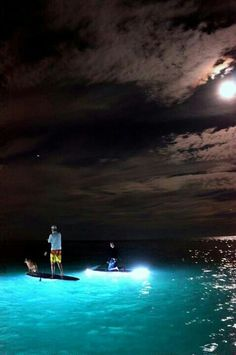 Click here to experience #FortLauderdale #Beaches – on a night #paddleboard www.precisionpaddleboards.com Tours start at $40.00