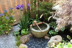 Redo the pot fountain. Move black rocks to around the outside like this surrounded by larger rocks. The irises.