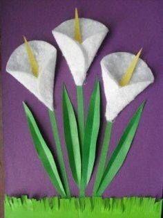Flor de jarro