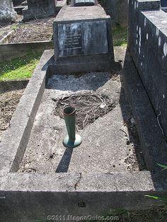 Edgar HEENAN - accidentally killed | Flickr - Photo Sharing!