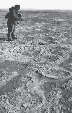 A very rare occurrence of woolly mammoth footprints – here preserved in 11,000-year-old sediments at St. Mary Reservoir, southwestern Alberta