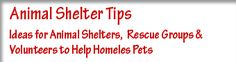 Animal Shelter Tips is a website with fundraising ideas, grant information, and adoption ideas for animal shelters, animal rescue groups, and animal lovers to .