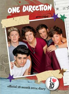 Chicago breaking news, sports, business, entertainment, weather and traffic - Chicago Tribune One Direction Official, One Direction 2014, Water Tower Place, Waxing Poetic, Tween Gifts, Schools First, Chicago Tribune, Just Kidding, Holiday Gift Guide