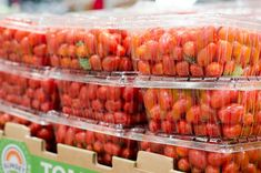 A roundup of options for your Whole30 Costco shopping trip! From dried fruits, fresh and frozen produce, protein, to food storage, Costco has it all.