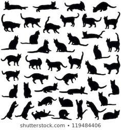 Cat Shadow Silhouette - Free vector graphic on Pixabay Cat Silhouette Tattoos, Black Cat Silhouette, Silhouette Images, Silhouette Vector, Shadow Silhouette, Cat Outline, Black Cat Tattoos, Cat Quilt, Illustration