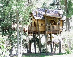 If I had a treehouse I would need nothing else