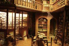 Musée des miniatures et décors de cinéma, Lyon - taille moyen d'un livre: 1.5 cm!