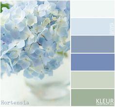 HORTENSIA - Kleurenpalet zachte tinten blauw en groen.