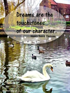 Dreams are the touchstones of our character