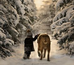 the snows.. by Elena Shumilova | My Photo | Scoop.it