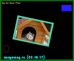 Dog Cat House Plans 194330 - The Best Image Search