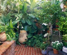 37 Beautiful Garden Pictures For You Get Basic Engineering, Home Design & Home Decor. Beautiful Garden Pictures For YouGreen colours are great for human eyes and offer m Small Tropical Gardens, Small Courtyard Gardens, Small Vegetable Gardens, Small Courtyards, Small Gardens, Courtyard Ideas, Courtyard Design, Large Backyard Landscaping, Tropical Backyard
