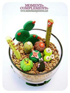 plantas cactus (miniCentros decorativos)