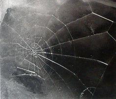 Vija Celmins - Web