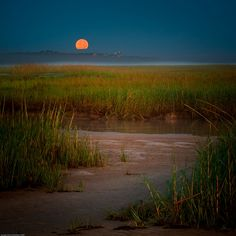 moonset at paine's creek (cape cod bay) by m greenbaum photography on Flickr