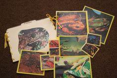 Amphibian Folder