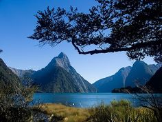 I remember my godmother telling me about New Zealand's fjords as a kid, and I've always wanted to see them.