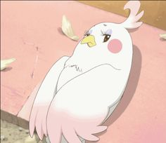 Tamako Market ~~ Dera flirts with... you! :: GIF