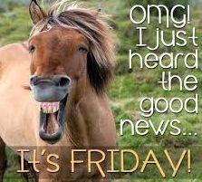 Happy Friday Gif, Good Morning Happy Friday, Happy Friday Quotes, Today Is Friday, Thursday Quotes, Good Morning Funny, Good Morning Quotes, Morning Memes, Hello Friday