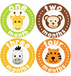 Zoo Baby Month Stickers