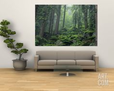 Moss-Covered Rocks Fill a Misty Wooded Hillside Muurposter bij AllPosters. Camille Pissarro, Vermont, Dogwood Trees, Frames For Canvas Paintings, Art Paintings, Forest Floor, Affordable Wall Art, Landscaping With Rocks, Cool Posters