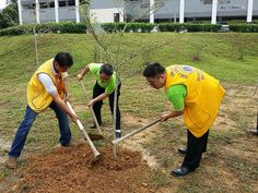 Lions Club of Pekan Nenas (Malaysia) | Planted 60 trees at local school.