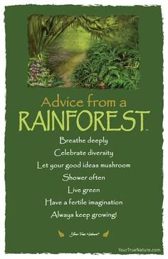 "Wedding Advice from a Rainforest- ""Breathe Deeply."" Your True Nature - SoQuotes Advice Quotes, Me Quotes, Qoutes, Reiki, True Nature, Nature Quotes, Spirit Guides, Wedding Advice, Good Advice"