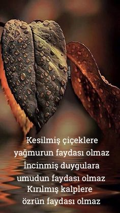 Boşuna uğraşma Best Love Messages, Book Flowers, Good Sentences, Beautiful Gif, Meaningful Quotes, Cool Words, Karma, Favorite Quotes, Islam