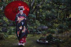 December photoshoot with the maiko Hinayuu! (Source)