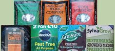 this Peat Free Compost Trial to test the composts on the market, and see how they perform when trialled alongside each other, under the same conditions. Propagation, Compost, Trials, Conditioner, Pumpkin, Plant, Free, Pumpkins, Squash