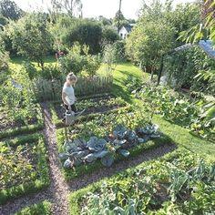 Garden Types This garden really floats my boat ; - Garden Types This garden really floats my boat ; Do you agree? Potager Bio, Potager Garden, Veg Garden, Vegetable Garden Design, Garden Cottage, Garden Care, Vegetable Gardening, Veggie Gardens, Garden Beds