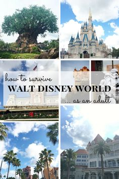 How to Survive Walt Disney World As An Adult: Where to eat, where to stay, and what to do. Also includes the full list of where alcohol is served in Magic Kingdom.