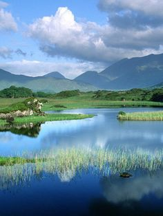 Killarney, Ireland. I've never been (though a trip is in the works for 2013 when my bff and I are both 40) but I dream about Ireland every time I close my eyes.