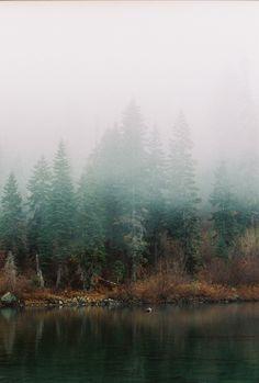 Foggy morning at Castle Lake | Taylor McCutchan Photography.