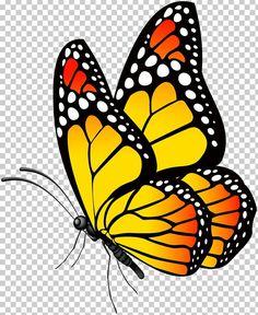 Butterfly Clip Art, Butterfly Drawing, Butterfly Pictures, Butterfly Painting, Drawings Of Butterflies, Yellow Butterfly Tattoo, Butterfly Stencil, Simple Butterfly, Art Papillon