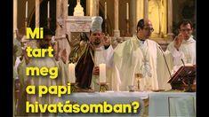 Mi tart meg a papi hivatásomban? Tart, Youtube, Pie, Tarts, Torte, Youtubers, Youtube Movies