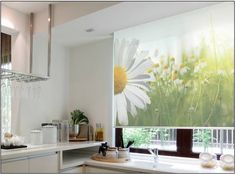 Graphic shades are an interesting addition to any room. You can use any image of your choice (including characters or sports logos), making it an especially cool option for a kid's room or man cave.  Schedule a free consultation at http://www.budgetblinds.com/Danvers/.