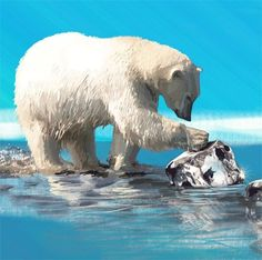 Art Print Polar Bear Global Warming 8 x 10 inches by on Etsy Graphic Design Posters, Global Warming, Polar Bears, Art Prints, Illustration, Christmas Cards, Ice, Earth