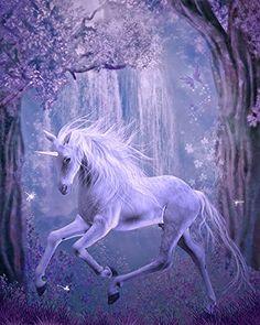 Papier peint / Poster géant en textile sans raccord « Cheval unicorne dans la nuit 3 » 210cm(L) x270cm(H) Atelier WYBO http://www.amazon.fr/dp/B00O55CNLK/ref=cm_sw_r_pi_dp_aXnuub1G3GDET