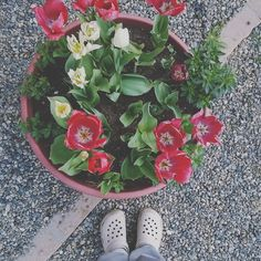 Oggi per riposarmi passo l'aspirapolvere in tutta la (nostra) casa  e poi accompagno nonna  a fare la tac.  #fwas #fwis #foot_love_club #selfeet #whereistand #fromwhereistand #feet #instafeet #kosedikatia #wheremyfeetare #wheremyfeetaretoday #ihavethisthingwithfloors  #tileaddiction #fromwhereonestand #lookdown #happyfeet #travellingfeet #everystepwetake #makeaselfeet by katia_kappao