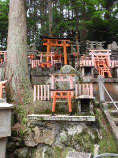 Kyoto area, Japan