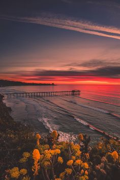 """banshy: """"San Diego, California by Alec Basanec """" One of my home sweet homes ….I became a mother there .. and life once again began anew …. ღk"""