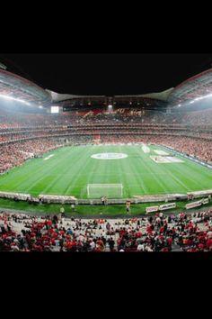 Vista interna. Estadio Da Luz. SL Benfica, Lisboa. Portugal